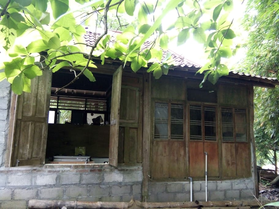 kitchen window at the back of the house with green scenery