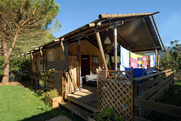 Tenda Safari WOOD LODGE