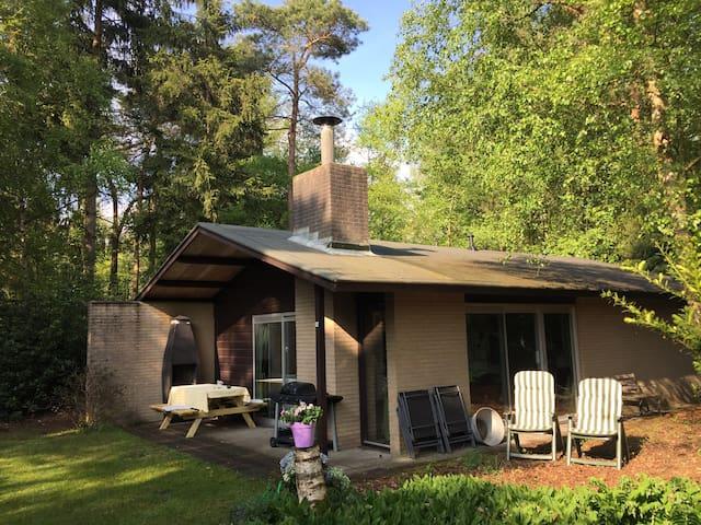 Cosy bungalow