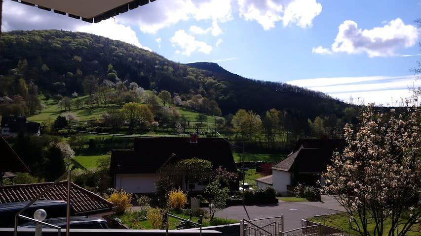 Ferienwohnung für Ruhe & Erholung - Dernbach - House