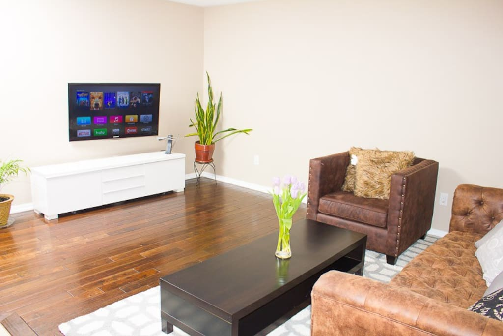 Living Room with Netflix access