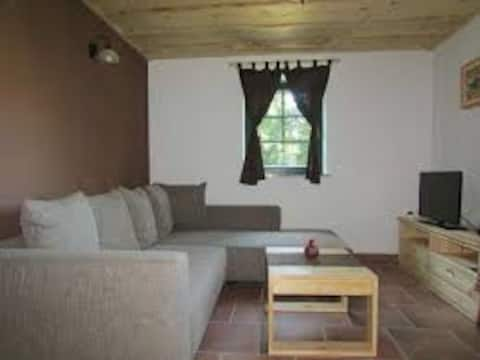 Pets friendly BROWN Apt. next to ski slope