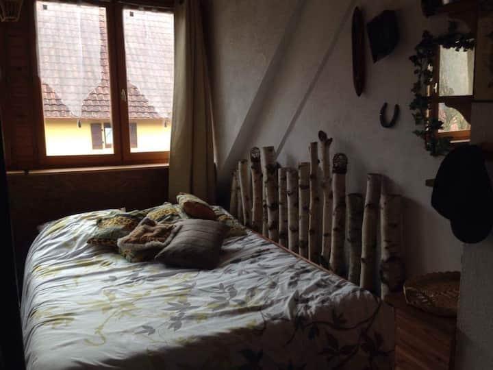 Chambre pour 2 au coeur du jardin d'Alsace