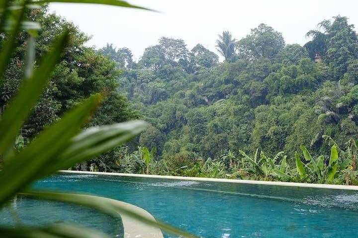 Rumah Djalin Dago. Bandung's hidden gem.