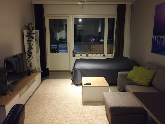 Great studio with balcony - Tampere - Appartement