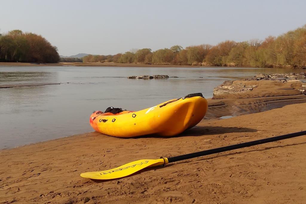 paddling on the orange river
