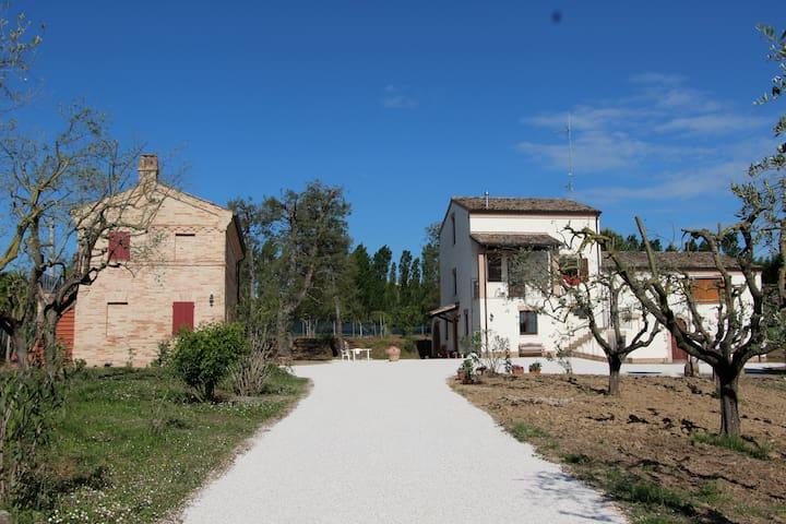 Schönes Haus im Park zu vermieten - Sant'Elpidio a mare - Huis