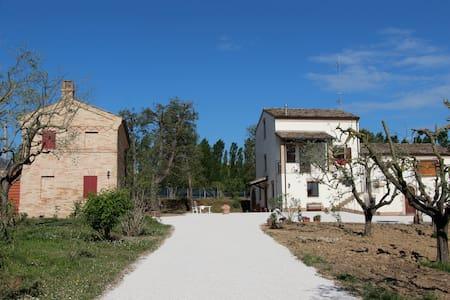 Schönes Haus im Park zu vermieten - Sant'Elpidio a mare - Haus
