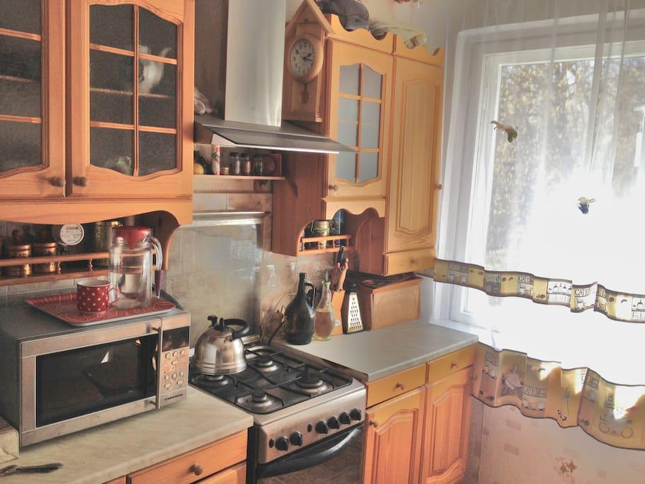 кухня/плита/обеденный стол