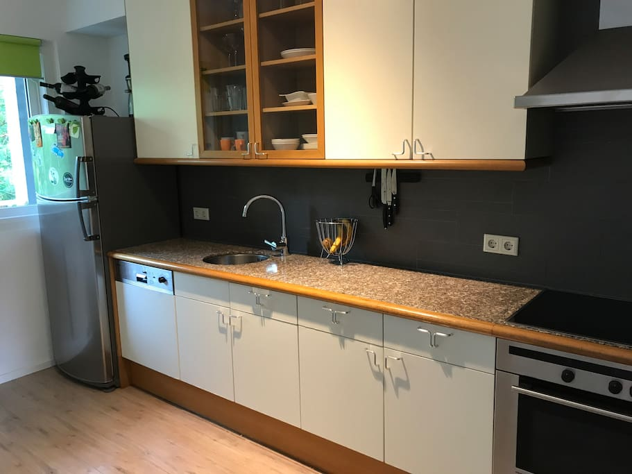 Complete kitchen with a dishwasher, refrigerator, oven, cooking plates, water cooker, Nespresso machine etc.