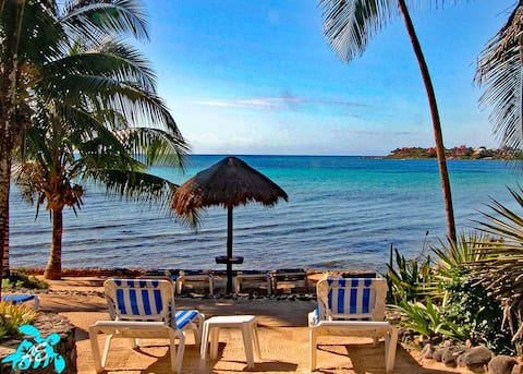 Your view and personal beach loungers