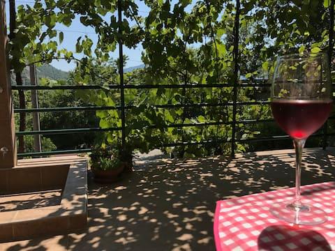 Tranquillity & comfort - spacious studio & terrace