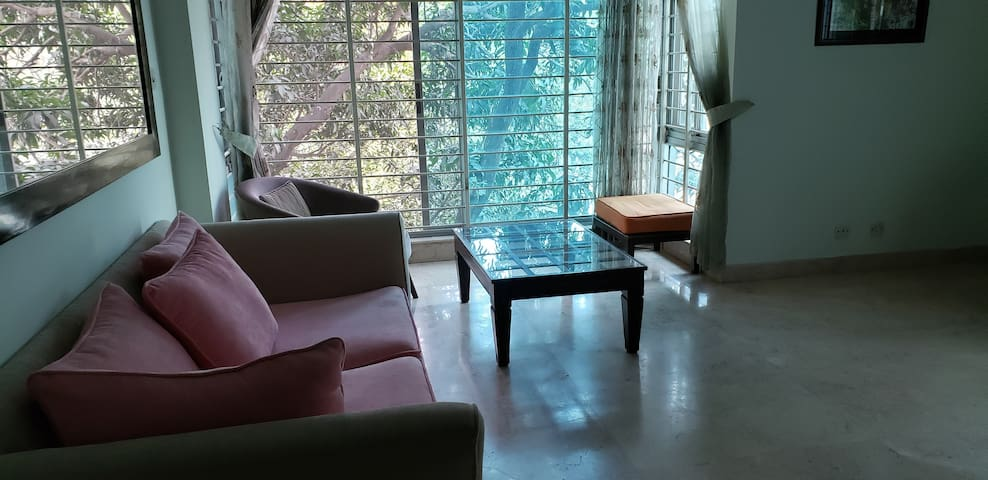 VIP area, fully secure in Banani, Dhaka