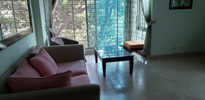 VIP area, fully secure in Banani, Dhaka
