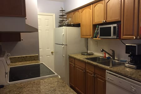 1 bedroom condo with converta-couch - West Springfield - Lakás
