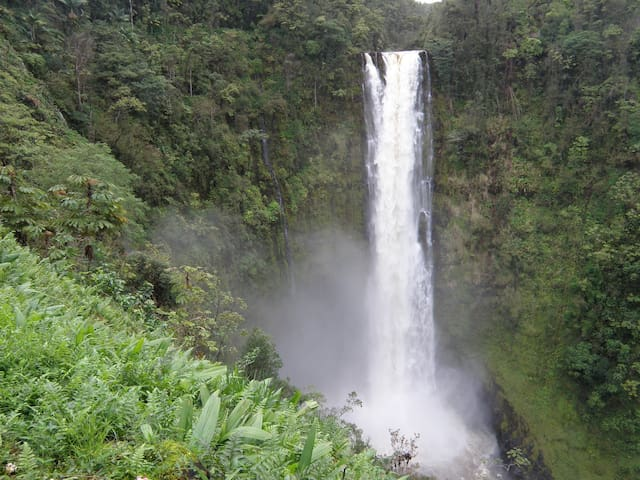 Akaka Falls is 10 minutes away by car