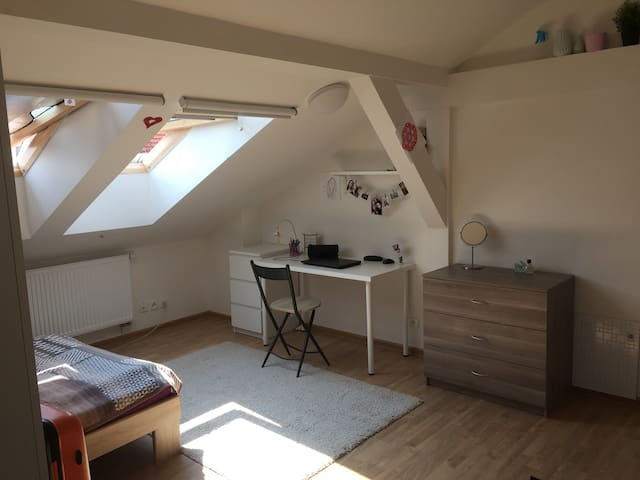 Top floor apartment with a view to Prague