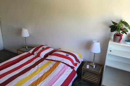 Nice cauzy room with private bathroom and toilet - Fegersheim