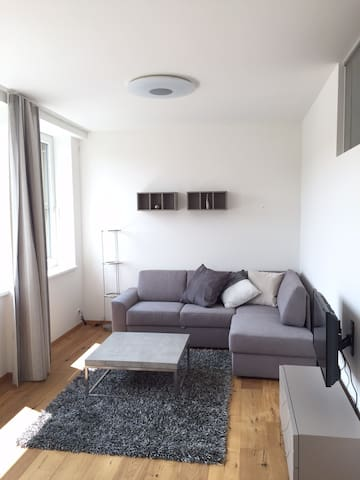 New apartment in the centre of Steyr - Steyr - Departamento