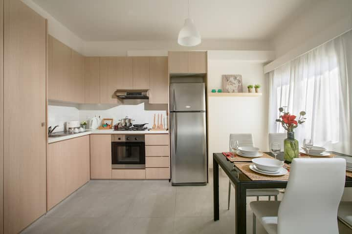 Minimal Two Bedroom Apartment In Nicosia Apartments For Rent In Strovolos Nicosia Cyprus