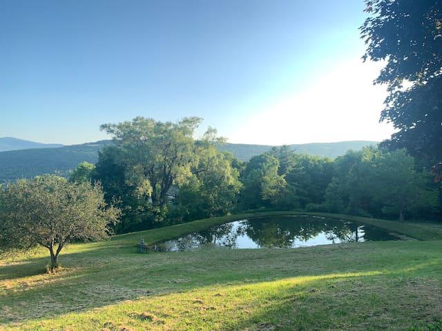 Ranch-Style Panorama Magic Retreat