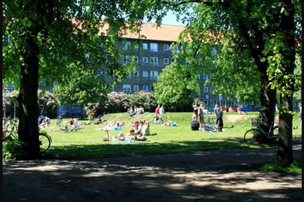 100 m to the awesome Nørrebro Park.