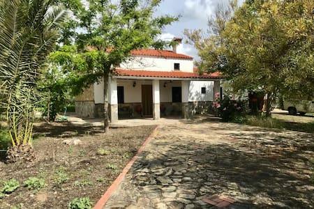 Casa de campo en Llerena