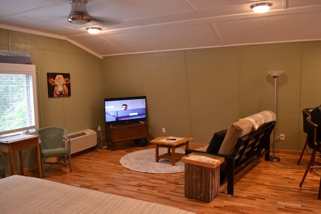 Cable TV, wifi, futon can convert to full bed