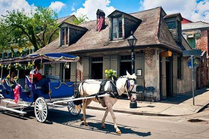 Modern Bourbon Street Oasis #10