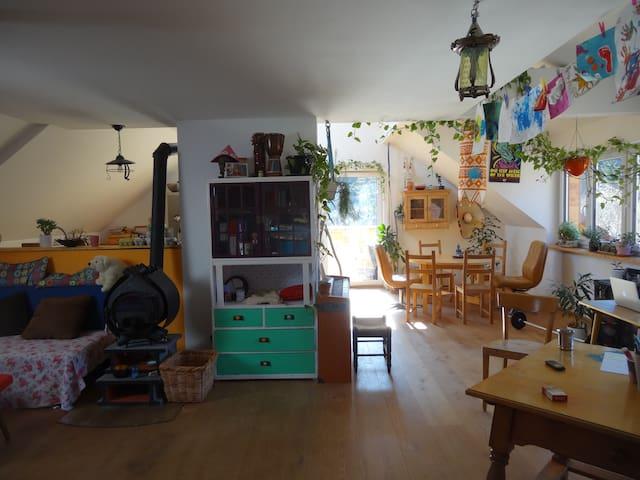Gemütliche Wohnung in Zentrums nähe - bad ischl - Lakás
