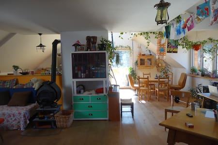 Gemütliche Wohnung in Zentrums nähe - bad ischl - Huoneisto