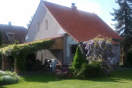 Private room - Kralupy nad Vltavou - 獨棟