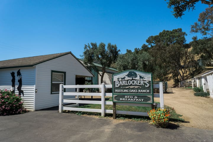 The Studio at Barlocker's Rustling Oaks Ranch - Salinas