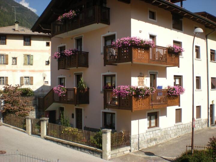 Luminoso appartamento a Pelugo CIPAT022138AT688690