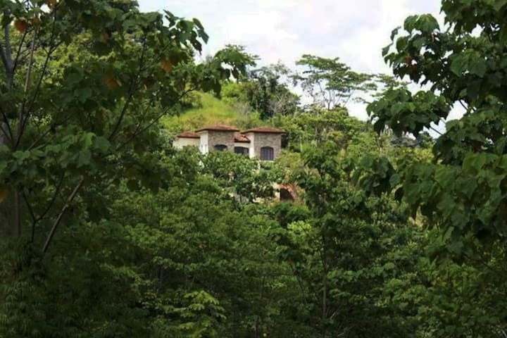 """TREE CASTLE"" WITH CANOPY & OCEAN VIEWS - 80%OFF! - Esterillos Oeste - House"