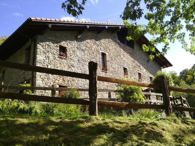 Caserío  Siglo XVI en entorno rural - Errezil - Haus