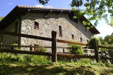 Caserío  Siglo XVI en entorno rural - Errezil - 独立屋