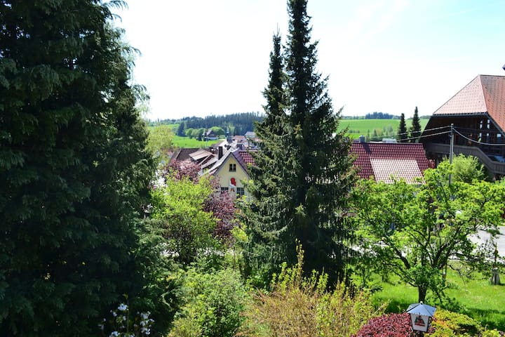 Double Room with Balcony in the Black Forest - Grafenhausen - Vendégház