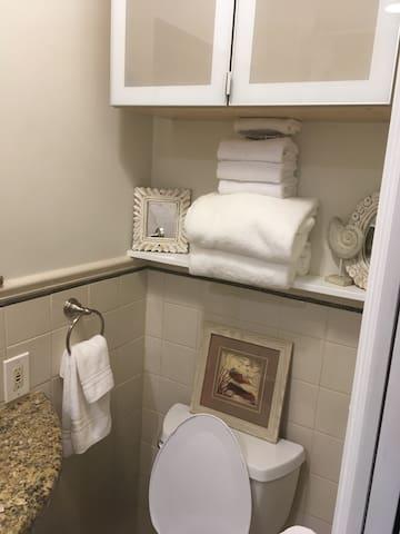 Suite's Private Bath