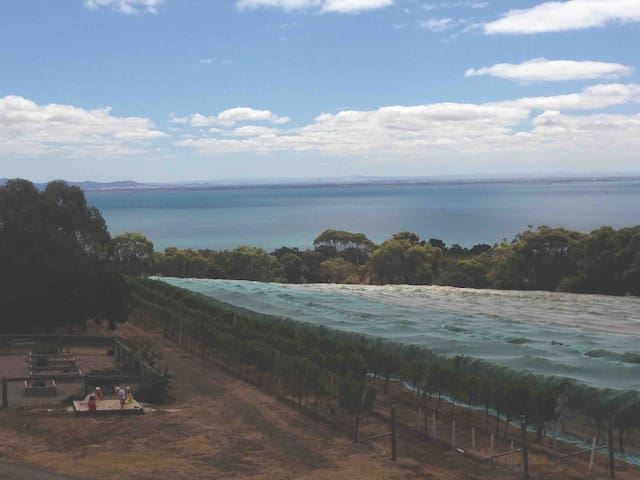 A days outing to the local wineries.  Terindah Estate - perfect views over Corio Bay.