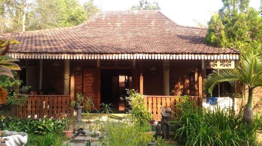 Back to Nature with Homestay Jogja -Spacious House