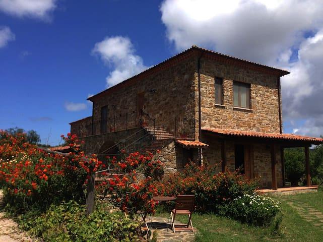 Casa Vacanze Il Mandorlo - Appartamento Carrubo