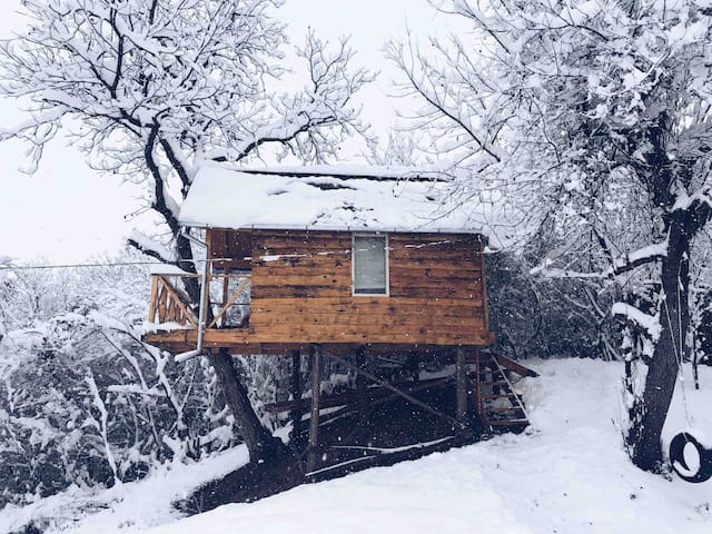 Transylvania Tree House   ★ Self Check-In ★