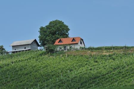 Vineyard cottage Zdolšek - Šmarje pri Jelšah - Ev