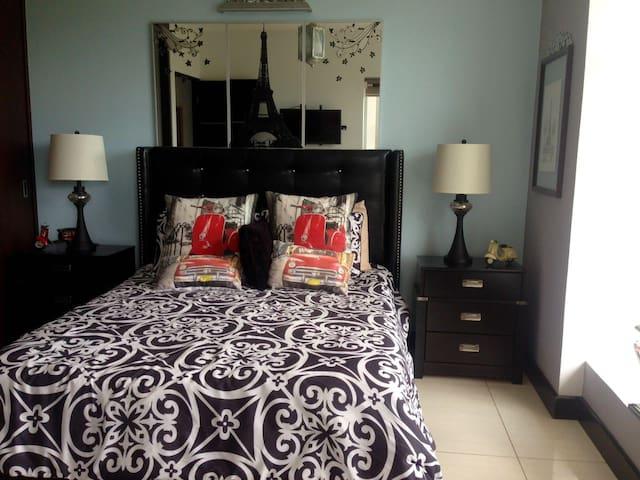 Pura Vida Penthouse - San José - Apartment