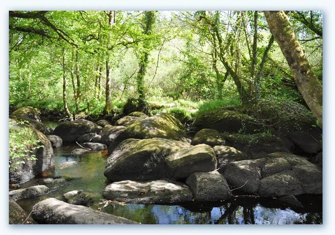 Forêt Légendaire d' Huelgoat