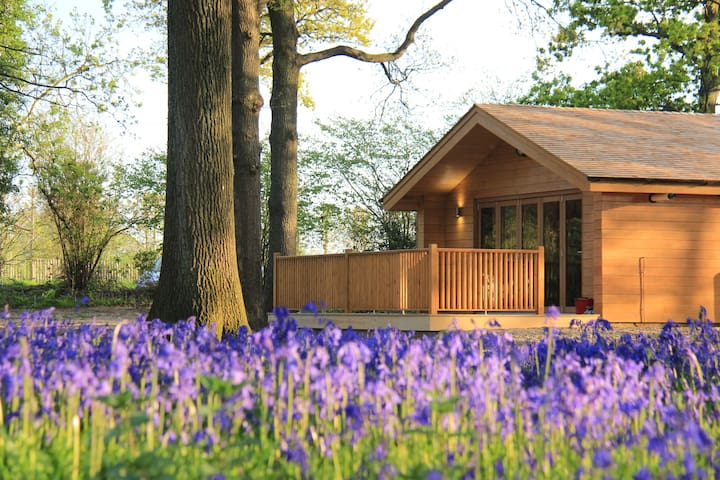 Bluebell Lodge in West Sussex, close to Brighton