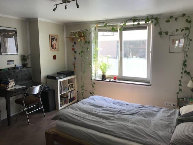 Schönes Zimmer in Wohngemeinschaft am Regerplatz