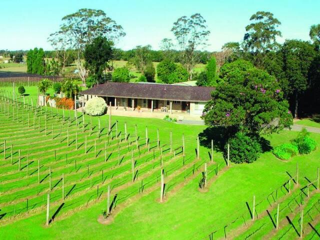 Vineyard Estate Homestead