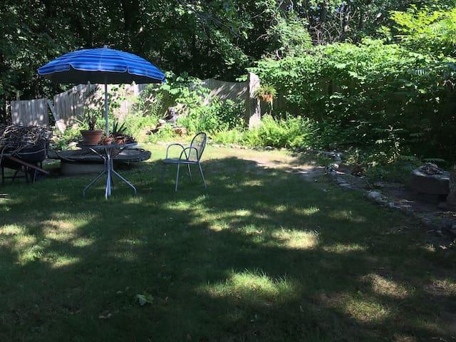 Shady area of the garden…